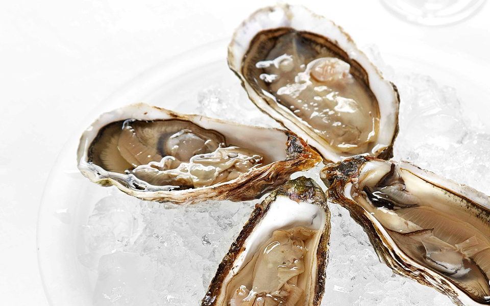 oysters-on-ice-with-lemon-