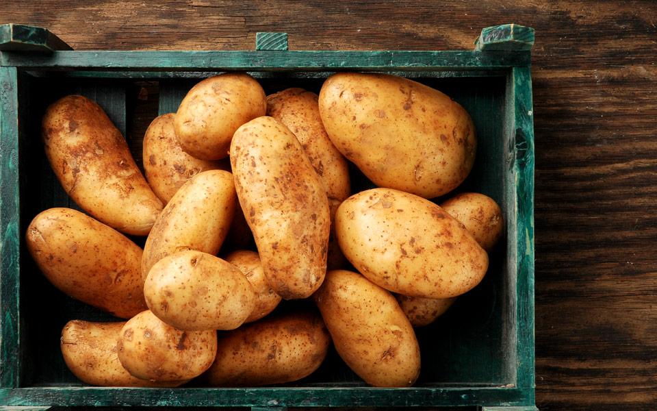 orf_0098_patates