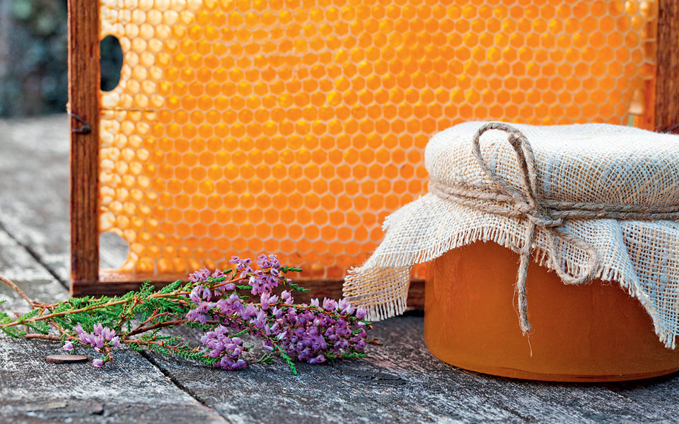 Γιατί το μέλι ερείκης έγινε της μόδας | Η ΚΑΘΗΜΕΡΙΝΗ