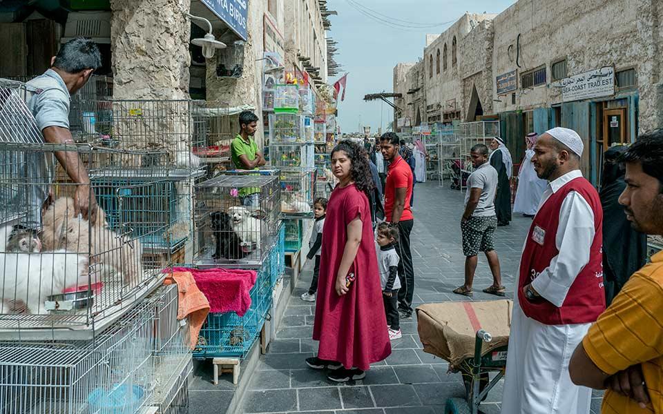 qatar_hi-res_dsc6709-web