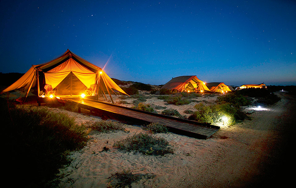 tents-at-night