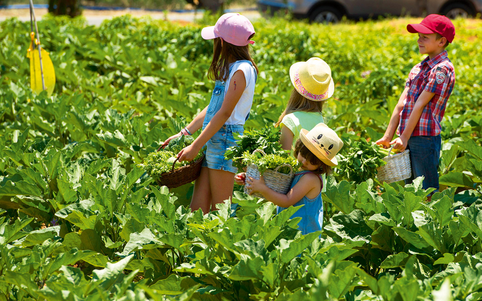 young-gardeners-1