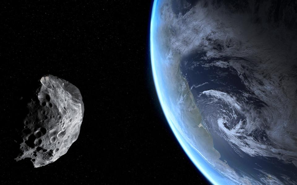 asteroidis