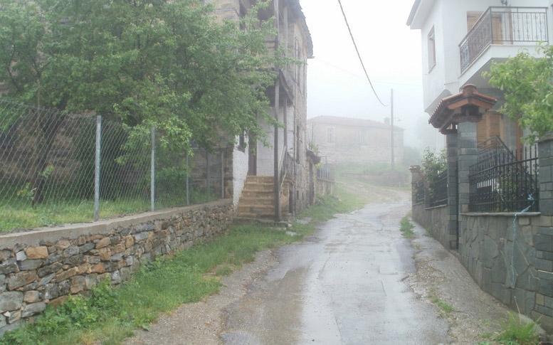 damaskinia3