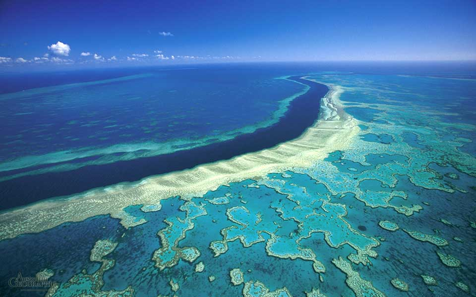 sta-tropika-dasi-ton-okeanon1
