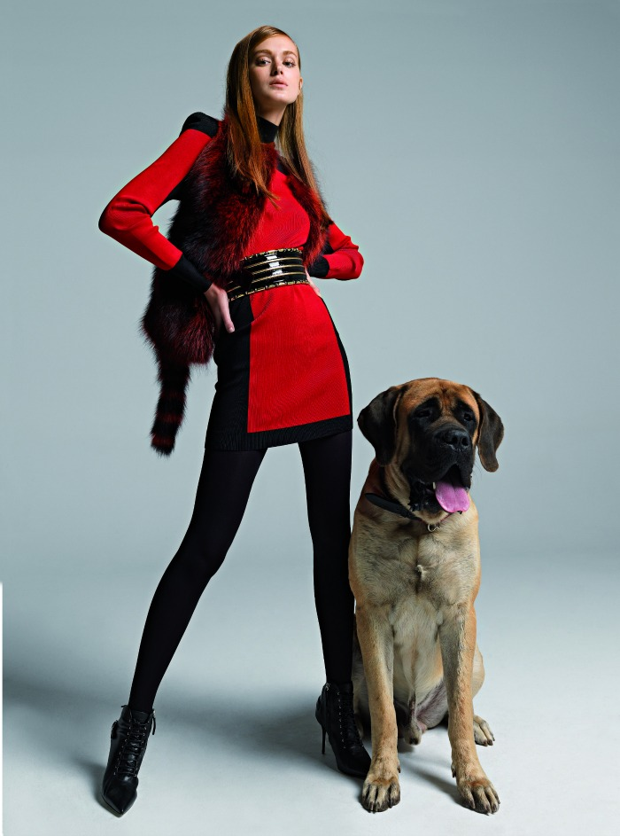 fashion-dog-day-afternoon6