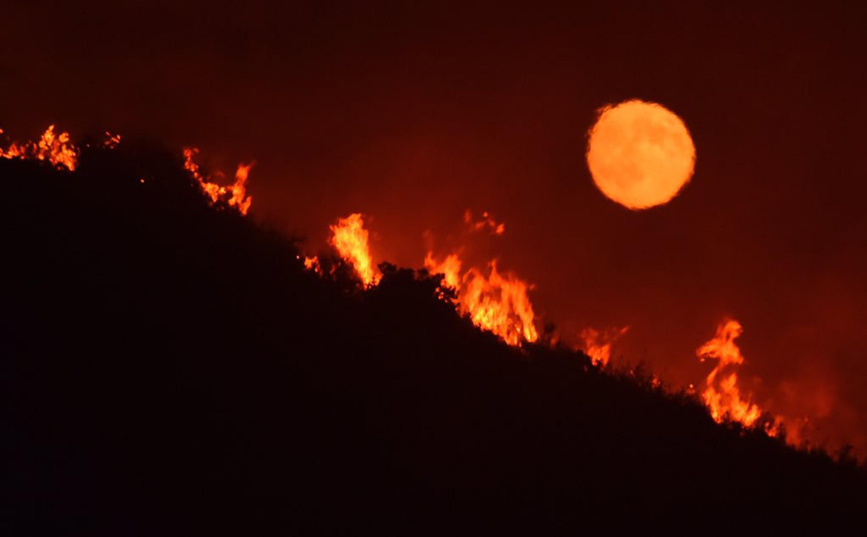 katastrofikes-pyrkagies-se-kanada-kai-kalifornia-amp-8211-chiliades-ektopismenoi-foto1