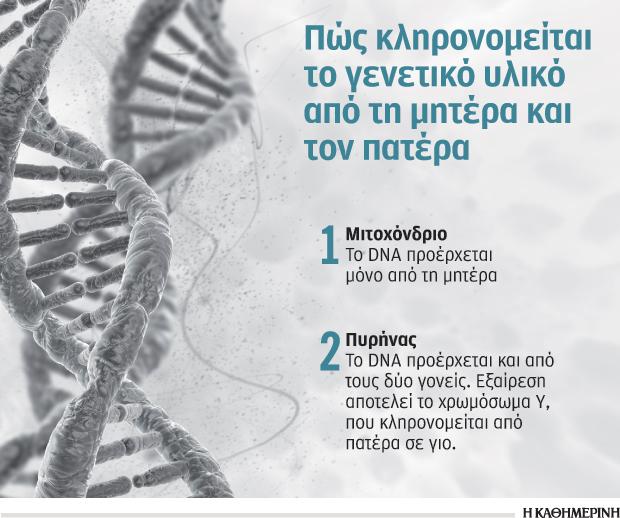 moda-ta-genealogika-dendra1
