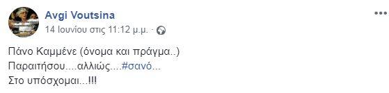 apo-tin-kota-sto-amp-8230-sano-poia-einai-i-gynaika-poy-epitethike-sta-grafeia-ton-anel-fotografies5