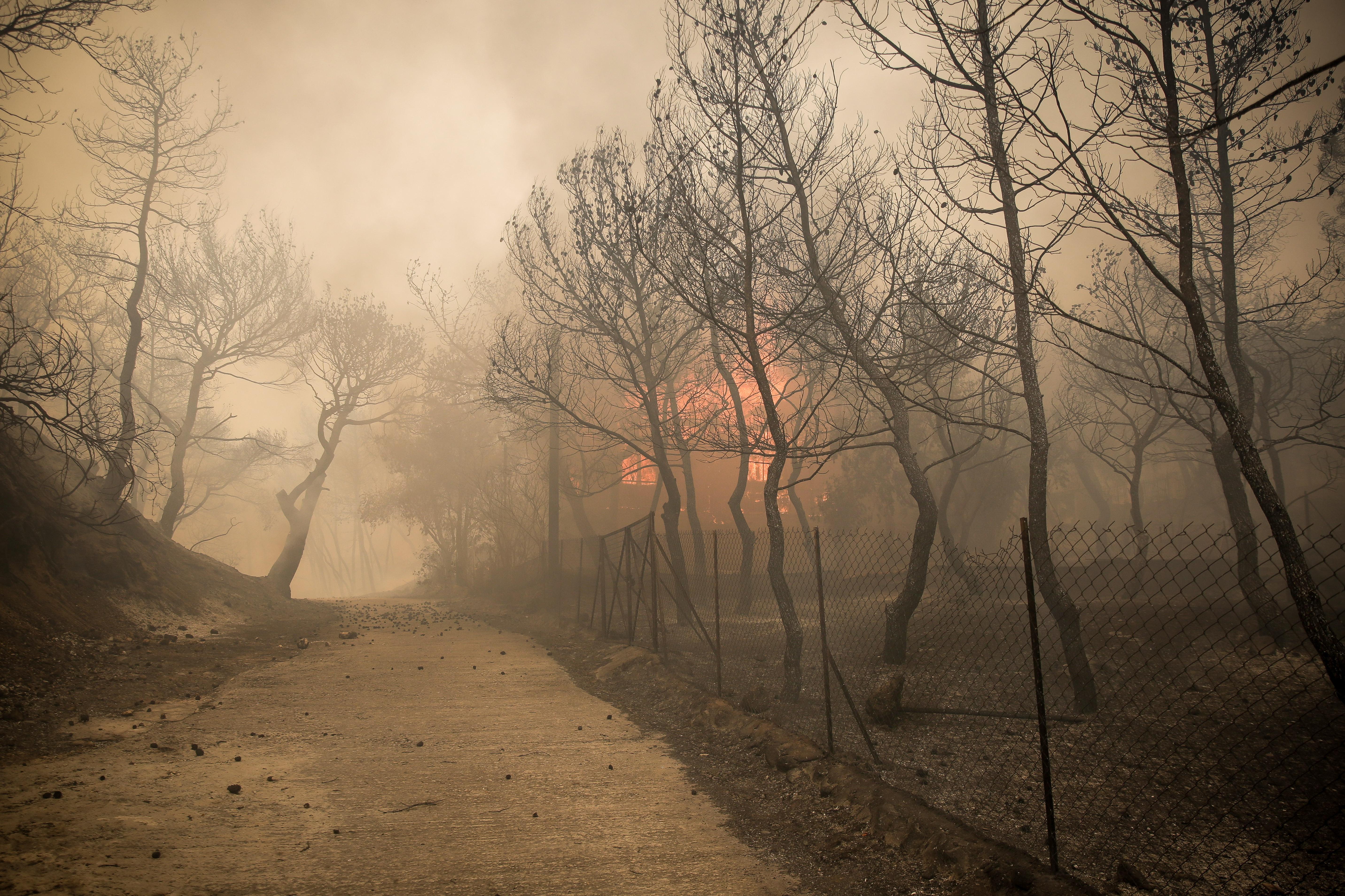eikones-oloklirotikis-katastrofis-apo-tis-pyrkagies-foto-amp-8211-vinteo33