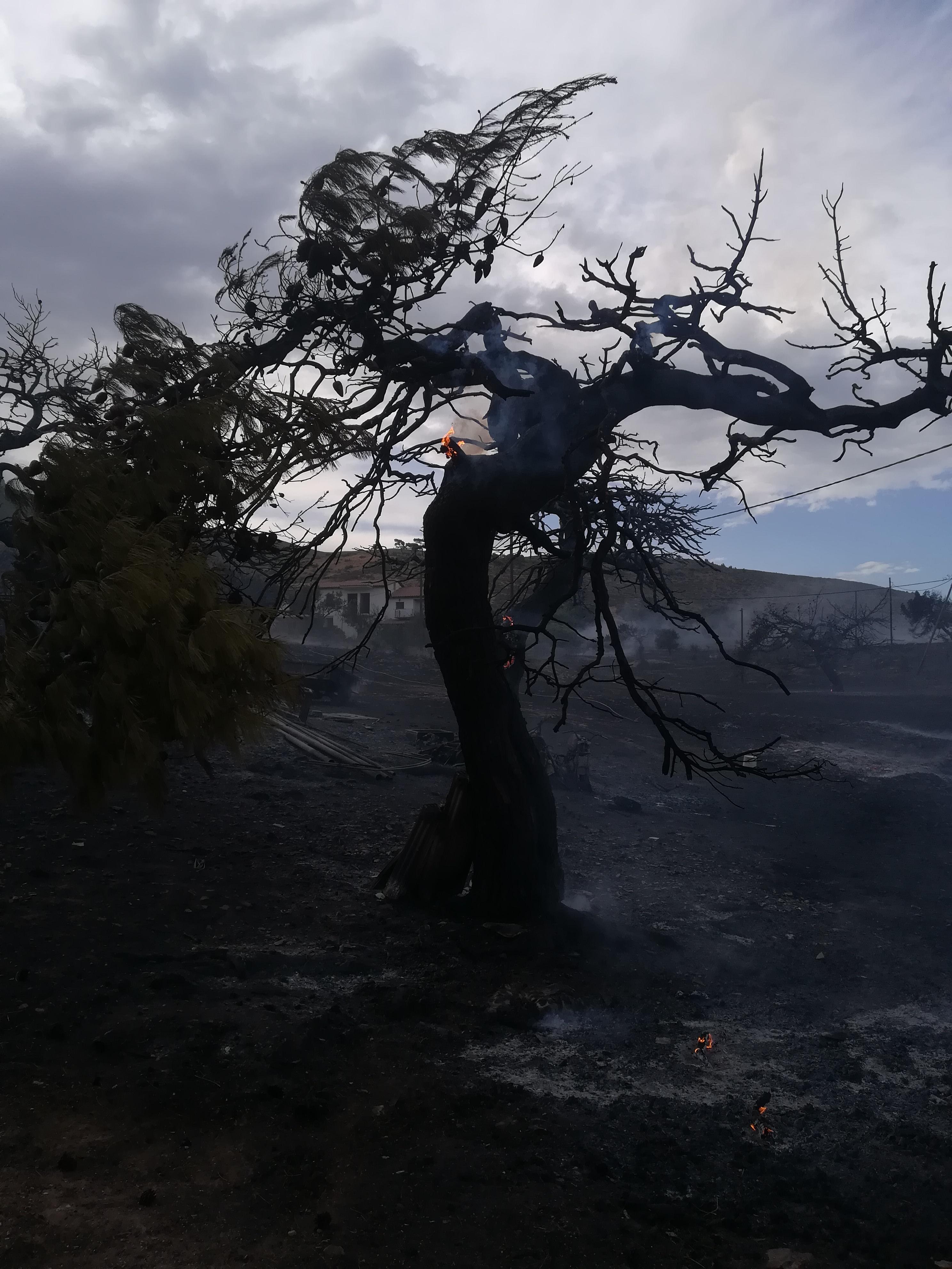 eikones-oloklirotikis-katastrofis-apo-tis-pyrkagies-foto-amp-8211-vinteo15