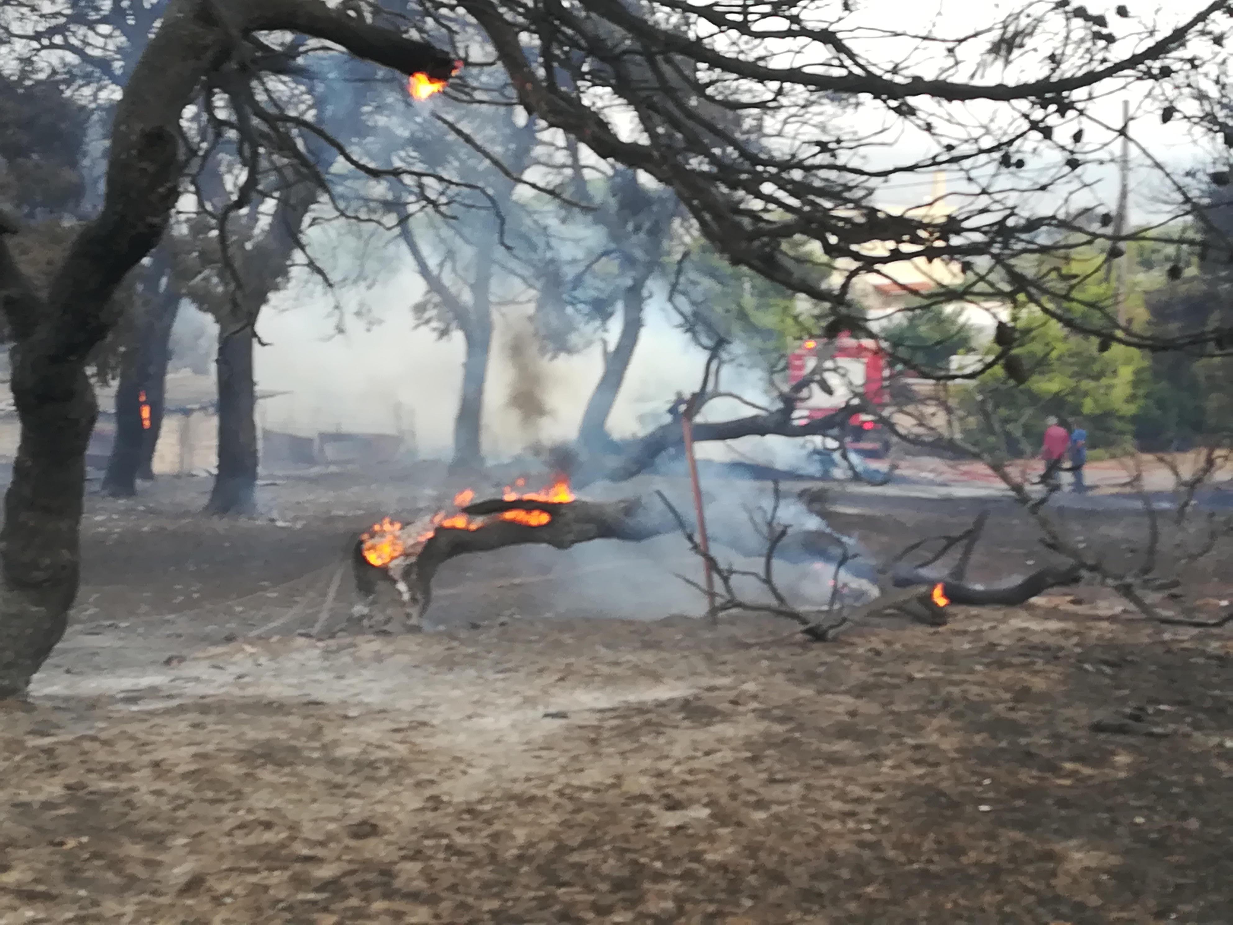 eikones-oloklirotikis-katastrofis-apo-tis-pyrkagies-foto-amp-8211-vinteo7