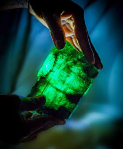 to-entyposiako-smaragdi-liontari-poy-vgike-apo-orycheio-tis-zampia1