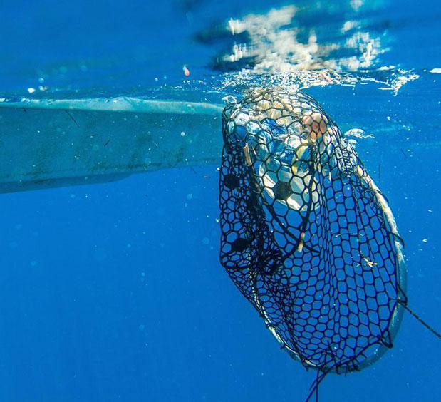 h-chopard-symvallei-stin-prostasia-ton-okeanon5