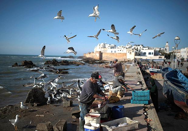 maroko-gia-tolmiroys13