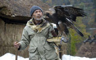 Ο τελευταίος στην Ιαπωνία Ο εικονιζόμενος Hidetoshi Mastubara είναι ο τελευταίος κυνηγός με γεράκια στην Ιαπωνία. Η χώρα έχει μακρά παράδοση στο κυνήγι αυτό αλλά ένας νέος νόμος από το Υπουργείο Περιβάλλοντος απαγορεύει την κατοχή επικίνδυνων ζώων (και πτηνών). Έτσι μετά από 40 χρόνια, ο κύριος Hidetoshi θα αποχαιρετήσει τα γεράκια του και την παράδοση αιώνων.EPA/EVERETT KENNEDY BROWN