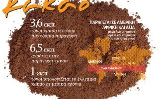 paragogi-kakao0