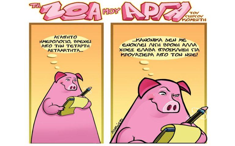 ta-zoa-moy-arga-2004088