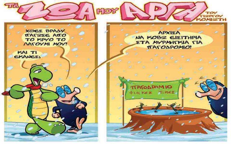 ta-zoa-moy-arga-2000955