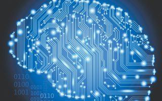 Το software μιμείται τον τρόπο λειτουργίας του ανθρώπινου εγκεφάλου, επιτρέποντας σε ένα σύστημα υπολογιστών να «αυτοεκπαιδεύεται», εξάγοντας το ίδιο τα μοτίβα που υπάρχουν στις πληροφορίες με τις οποίες τροφοδοτείται.