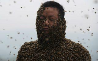 Δέρμα από μέλισσες. Θέλησε να δείξει την δεξιότητά του στο επάγγελμά του και απελευθέρωσε 460.000 μέλισσες, μιας και ο εικονιζόμενος She Ping από την επαρχία Chongqing, της Κίνας,  είναι μελισσοκόμος. Για σαράντα ολόκληρα λεπτά οι μέλισσες κόλλησαν πάνω του, καλύπτοντάς τον σχεδόν ολοκληρωτικά. Άγνωστο αν το εν λόγω εγχείρημα αποτέλεσε κάποιο ρεκόρ εκτός από  αξιοπερίεργο.  AFP PHOTO
