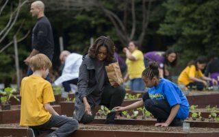 Έχει μπει επίσημα η άνοιξη. Απόδειξη ότι ο Λευκός Οίκος φυτεύει τα ζαρζαβατικά του. Πιστή στο πρόγραμμά της η Μichelle Obama, φύτεψε και φέτος με την βοήθεια μαθητών σχολείων, λαχανικά και μυρωδικά στον κήπο του Προεδρικού Μεγάρου. Είναι η έκτη χρονιά  από τότε που η Πρώτη Κυρία αποφάσισε να δείξει στους Αμερικανούς έναν πιο υγιεινό τρόπο διατροφής και άσκησης.  AFP PHOTO / Jim WATSON