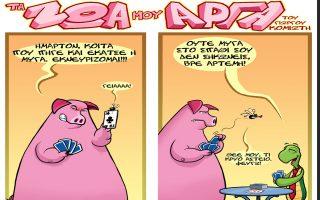 ta-zoa-moy-arga0