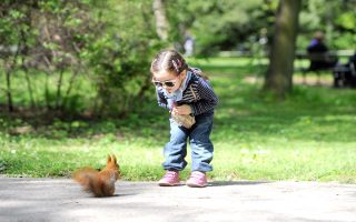 epa04174831 A child looks at a squirrel at the Royal Lazienki Park in Warsaw, on Easter Monday, Poland, 21 April 2014.  EPA/GRZEGORZ JAKUBOWSKI POLAND OUT