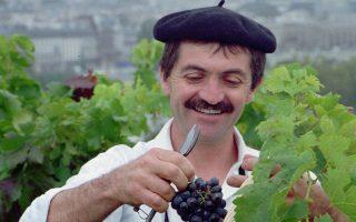 Σε μια παρισινή ταράτσα Γάλλος οινοπαραγωγός κόβει ένα τσαμπί σταφύλι.