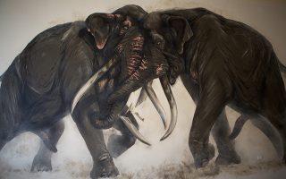 o-lavomenos-elefantas-toy-kalonerioy0