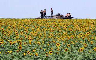 Στρατιωτική πειθαρχία 1. Μπορεί η φύση να οργιάζει τριγύρω, όμως οι Ουκρανοί στρατιώτες παραμένουν πιστοί στο καθήκον τους. Τα τεθωρακισμένα οχήματα έχουν σταθμεύσει 20 χιλιόμετρα νότια του Donetsk στο πλαίσιο εκστρατείας για  την ανακατάληψη  της πόλης. AFP PHOTO / DOMINIQUE FAGET