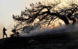 Ολο το Σαββατοκύριακο οι δυνάμεις δασοπυρόσβεσης έδιναν σκληρή μάχη με τις φλόγες, ακόμη και κατά τη διάρκεια της νύχτας.