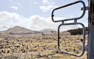 Από την τρομερή πυρκαγιά του Ιουνίου του 2007 χάθηκαν 36.000 στρέμματα του δρυμού.