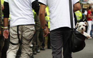 «Ο ένας από την παρέα εξαπέλυσε την επίθεση, ένας φίλος του τον αποθάρρυνε, οι υπόλοιποι, δύο αγόρια και η κοπέλα του ενός, τον αποθέωναν!».