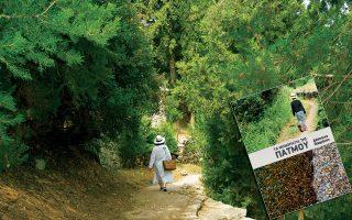 Το μονοπάτι που οδηγεί στους Κήπους, στο νότιο τμήμα του νησιού. (Φωτογραφία: Μαρία - Αριάδνη Βακράτση)