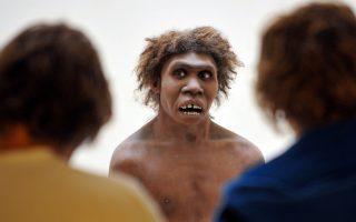 Νεάντερταλ στο Εθνικό Μουσείο Προϊστορίας στην Ντορντόν της Γαλλίας.