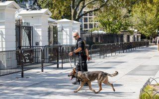 Τις τελευταίες ώρες η περιοχή ήταν γεμάτη από άνδρες της Σίκρετ Σέρβις με ειδικά εκπαιδευμένα σκυλιά.