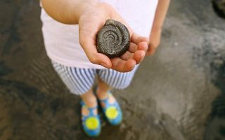 A child holding a fossil, on a beach in Yorkshire. MR