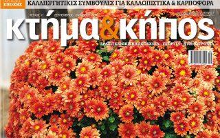 ktima-amp-038-kipos-oktovrioy0
