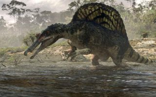 anakalyfthike-o-spinosayros-o-deinosayros-poy-etroge-karcharies-2044155