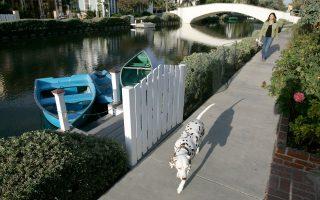 Οι ιδιοκτήτες σκύλων δαπανούν για περπάτημα μία ώρα την εβδομάδα περισσότερο συγκριτικά με τους ανθρώπους που δεν έχουν σκυλιά, αναφέρει αυστραλιανή έρευνα.