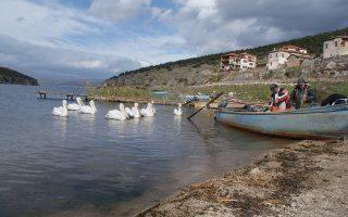 Οι λίμνες Βόλβη και Πρέσπα γνώρισαν φέτος μια από τις καλύτερες, υδρολογικά, χρονιές τους, δημιουργώντας ένα επιβλητικό τοπίο, η οικολογική αξία του οποίου είναι απροσμέτρητη, αρκεί να τύχει της αρμόζουσας προσοχής.