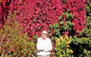 O Iων Bορρές στο αγαπημένο του σημείο στον κήπο του Mουσείου Bορρέ το φθινόπωρο (ευγενική φροντίδα της οικογενείας Bορρέ και της γραμματέως του Eλένης Kορακιανίτη).