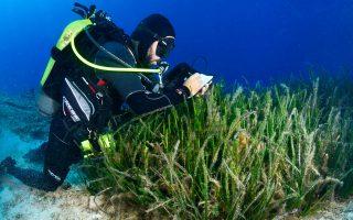 Η έρευνα πραγματοποιήθηκε το καλοκαίρι του 2014, από την ομάδα του εργαστηρίου Θαλάσσιας Γεωλογίας και Φυσικής Ωκεανογραφίας του Παν. Πατρών.