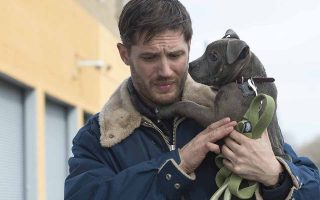 "Tom Hardy as ""Bob"" in THE DROP.