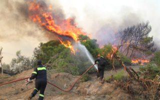 «Από την εμπειρία μου, μπορώ να πω ότι πρόκειται κατά κύριο λόγο για εμπρησμούς», λέει ο κ. Ασβεστάρης για τις φετινές πυρκαγιές, ενώ η φωτιά που ξέσπασε χθες το απόγευμα στο Κορωπί, σύμφωνα με την Πυροσβεστική, είχε αιτία ένα φορτηγάκι που ήταν σταθμευμένο στην άκρη της λεωφόρου Μαρκοπούλου.