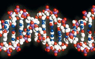 Η έλικα του DNA. Αυτή τη στιγμή η επιστημονική κοινότητα μελετά και προβληματίζεται για τις επιπτώσεις από την «εφαρμογή» της νεοεμφανισθείσας τεχνολογίας του ανασυνδυασμένου DNA, η οποία αποτέλεσε τη βάση της γενετικής μηχανικής.