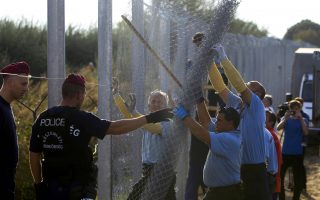 Wokers build the fence along the border with Serbia near the migrant collection point in Roszke, Hungary, September 14, 2015.   REUTERS/Bernadett Szabo