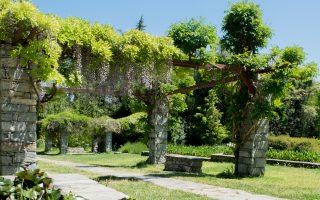 Ο Κήπος περιλαμβάνει περισσότερα από 500 είδη δένδρων και φυτών.