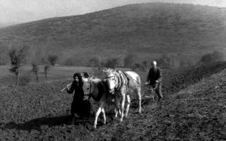 Μετά τον Β΄ Παγκόσμιο η ανασυγκρότηση σήμανε απαλλαγή των αγροτών από κάθε φόρο (στη φωτ. ζευγάρι αγροτών, δεκαετία του 1940).